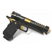 HICAPA 5.1 GOLD
